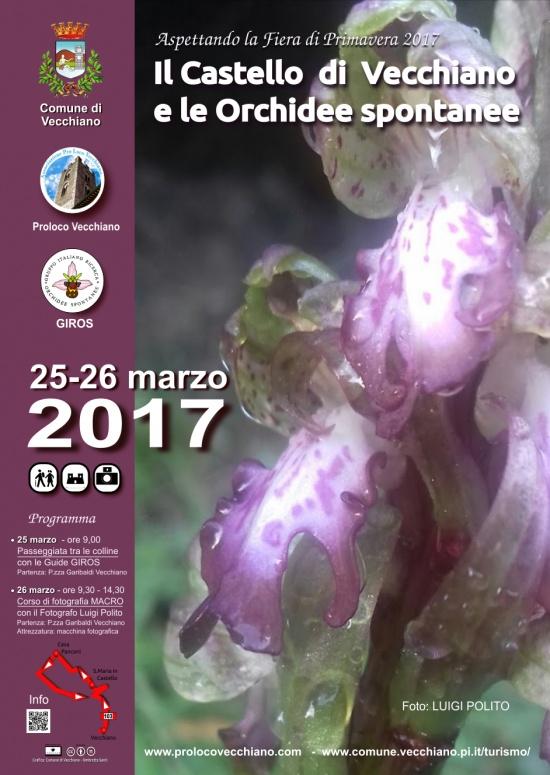 Il Castello di Vecchiano e le Orchidee spontanee